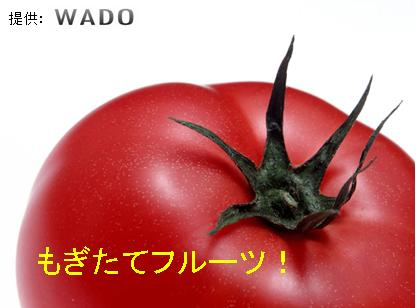 maike_image01